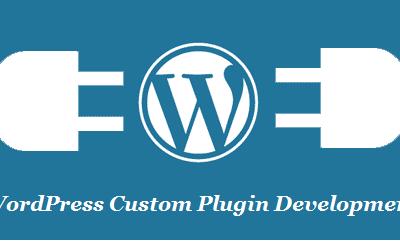 Custom WordPress Plugin Development and Customization